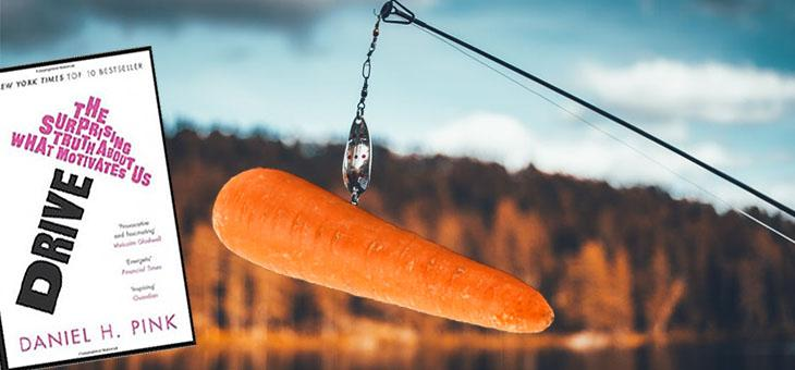 The Secret to Implementing Leadership Development - Forget the Carrot