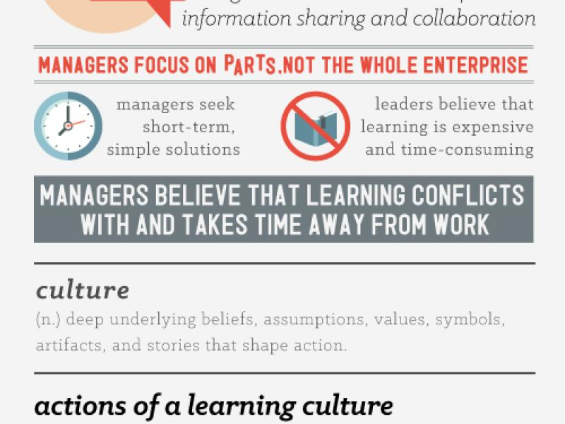 Developing a Learning Culture in Organisations
